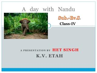 A   day   with    Nandu