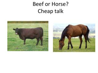 Beef or Horse? Cheap talk