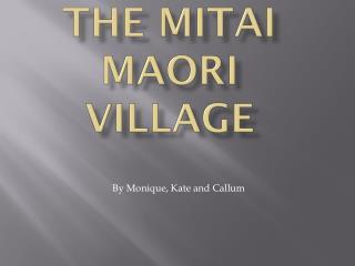 The Mitai Maori Village