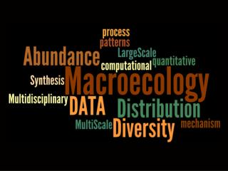 Macroecology  …characterizing and explaining patterns of abundance, distribution, and diversity