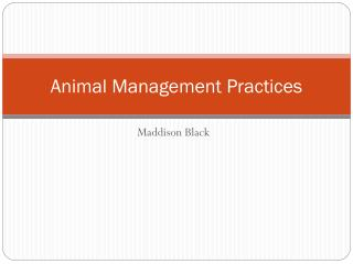 Animal Management Practices
