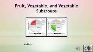 Fruit, Vegetable,  and Vegetable Subgroups