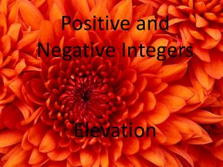 Positive and Negative Integers Elevation