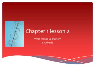 Chapter 1 lesson 2
