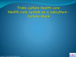 Trans culture health care   Health care system as a subculture- Culture shock