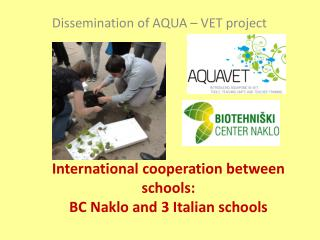 International c ooperation between schools : BC Naklo  and  3  I talian schools