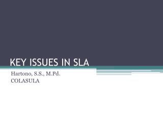 KEY ISSUES IN SLA