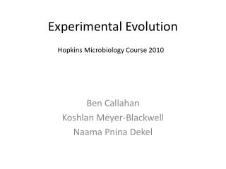 Experimental Evolution