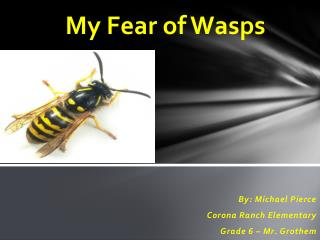 My Fear of Wasps