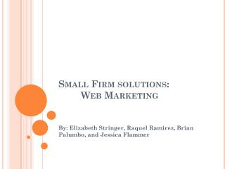 Small Firm solutions: 	Web Marketing