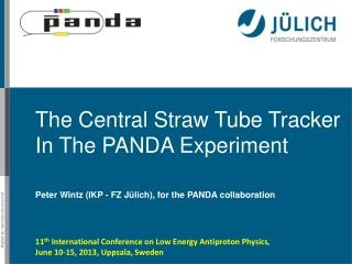 The  Central Straw Tube Tracker In The PANDA Experiment