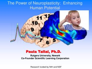 The  Power of Neuroplasticity:  Enhancing Human  Potential