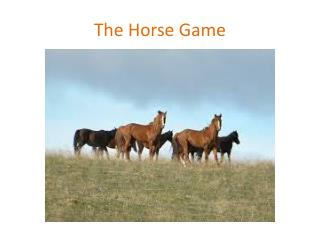 The Horse Game