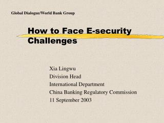 How to Face E-security Challenges