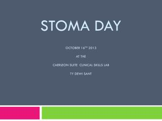 Stoma Day October 16 th  2013 At the  Caerleon Suite  Clinical Skills Lab  Ty Dewi Sant