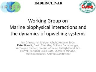 Working Group on Marine  biophysical interactions and the dynamics of upwelling systems
