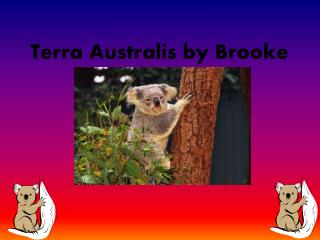 Terra  Australis  by Brooke