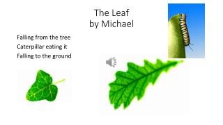 The Leaf by Michael