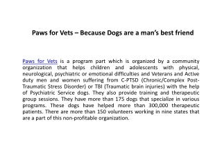 Paws for Vets - Because Dogs are a man's best friend