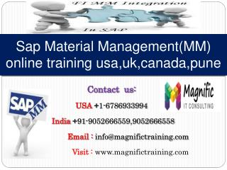 Sap Material Management(MM) online training usa,uk,canada,pu