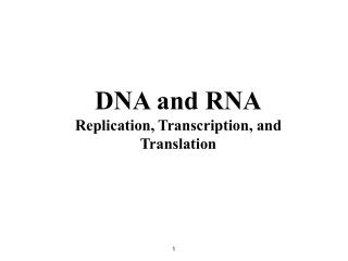 DNA and RNA Replication, Transcription, and Translation