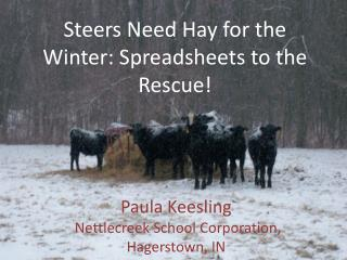 Steers Need Hay for the Winter: Spreadsheets to the Rescue!