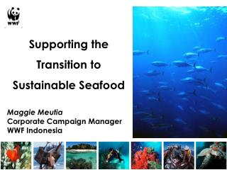 Supporting the Transition to Sustainable Seafood
