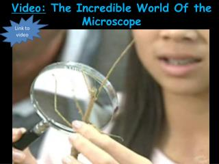 Video:  The Incredible World Of the Microscope