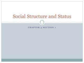 Social Structure and Status