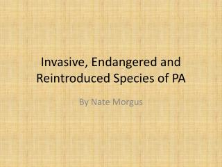 Invasive, Endangered and Reintroduced Species of PA