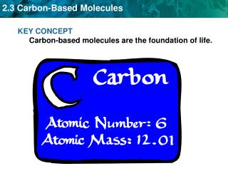 KEY CONCEPT Carbon-based molecules are the foundation of life.