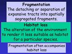 Fragmentation The detaching or separation of expansive tracts into spatially segregated fragments.