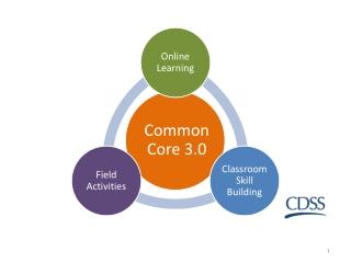 Common Core 3.0