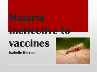 Malaria ineffective to vaccines