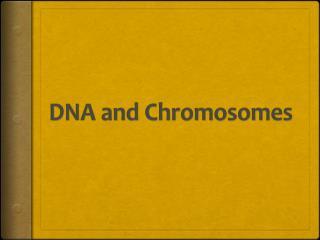 DNA and Chromosomes