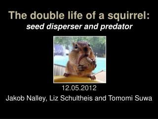 The double life of a squirrel: seed disperser and predator