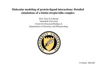 Molecular modeling of protein-ligand interactions: Detailed simulations of a biotin-streptavidin complex