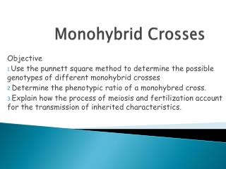 monohybrid genetics with corn lab report Genetics of corn short answer experiment 1: a monohybrid cross directions: use complete sentences and bold the answers and have them in a different color.