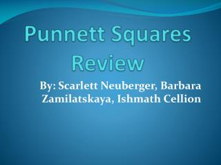 Punnett  Squares Review