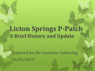 Licton Springs P-Patch A Brief History and Update