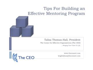 Tips For Building an  Effective Mentoring Program