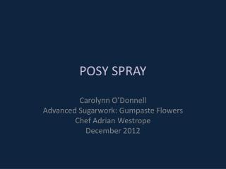 POSY  SPRAY