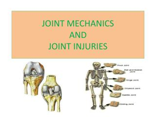 JOINT MECHANICS  AND  JOINT INJURIES