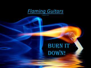 Flaming Guitars Flamer's Inc