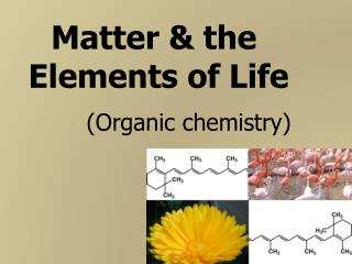 Matter & the  Elements of Life