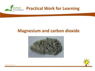 Magnesium and  carbon dioxide