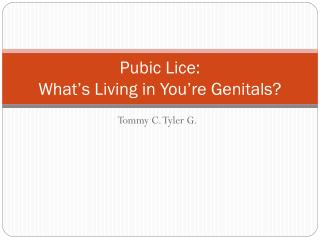 Pubic Lice: What's Living in You're Genitals?
