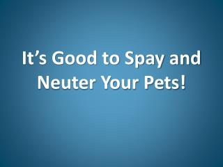 It's Good to Spay and Neuter Your Pets!