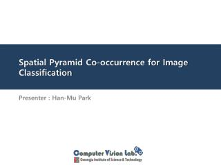 Spatial Pyramid Co-occurrence for Image Classification