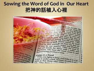 Sowing the Word of God in Our Heart 把神的話植入心裡
